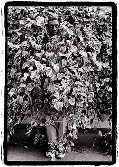 Bill Cosby Photograph by Dennis Hopper