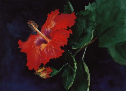 Hibiscus painting by Jane Seymour