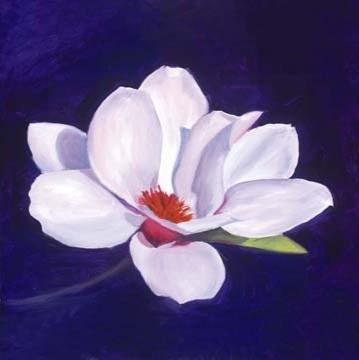 Portrait of a Magnolia by Jane Seymour