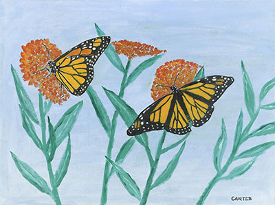Painting by Jimmy Carter, Monarchs and Milkweed, Source: The Carter Center